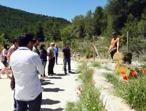 Formación en Proyecto Virere con Juanjo Martínez